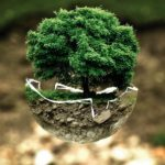 5 best reasons to go green when building your dream home